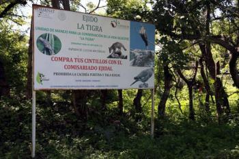 Buscan abolir la caza deportiva en México