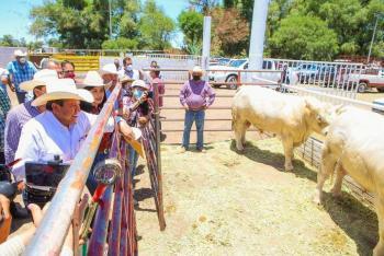 Anuncia David Monreal Avila apoyos a productores pecuarios y tianguis ganaderos en los primeros 100 días