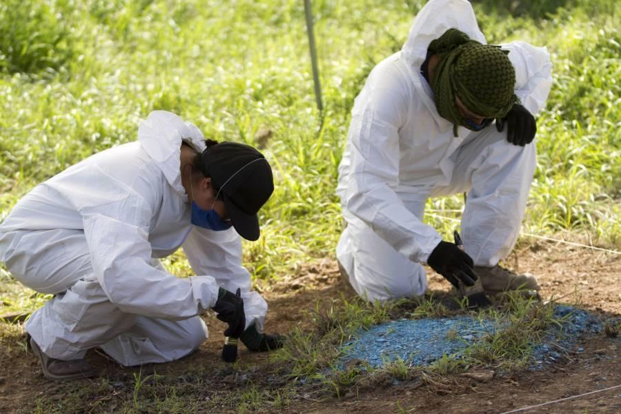 Crisis forense revictimiza a restos humanos de desaparecidos y familiares que los buscan