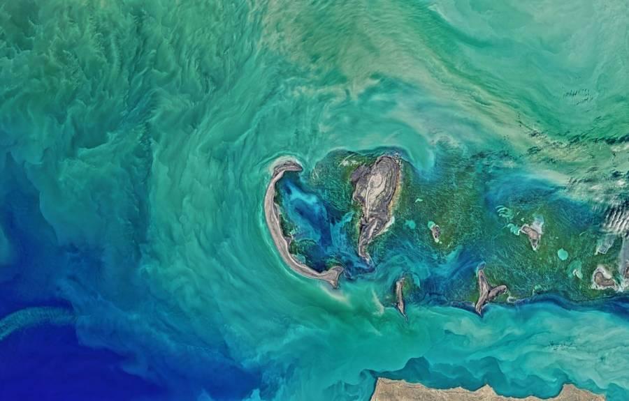 NASA busca rescatar zona crepuscular de océanos para combatir el cambio climático