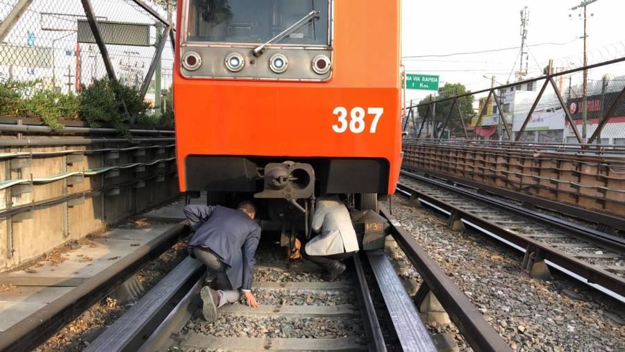 Reportan retrasos en Línea 8 del Metro por rescate de perro