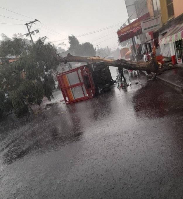 Caída de árboles y encharcamientos por lluvia y granizo en CDMX