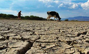Urge PT atender sequía en el norte de México