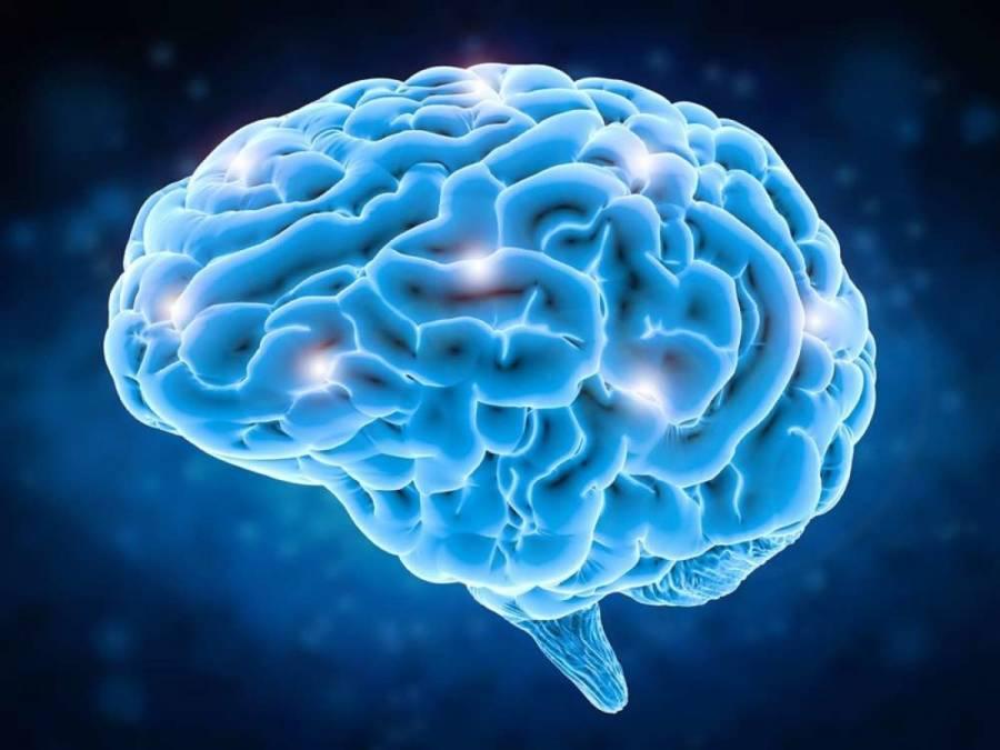 ¿Qué es la optogenética y cómo puede auxiliar en el estudio del cerebro?
