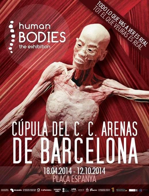 Esta exposición muestra cuerpos humanos reales