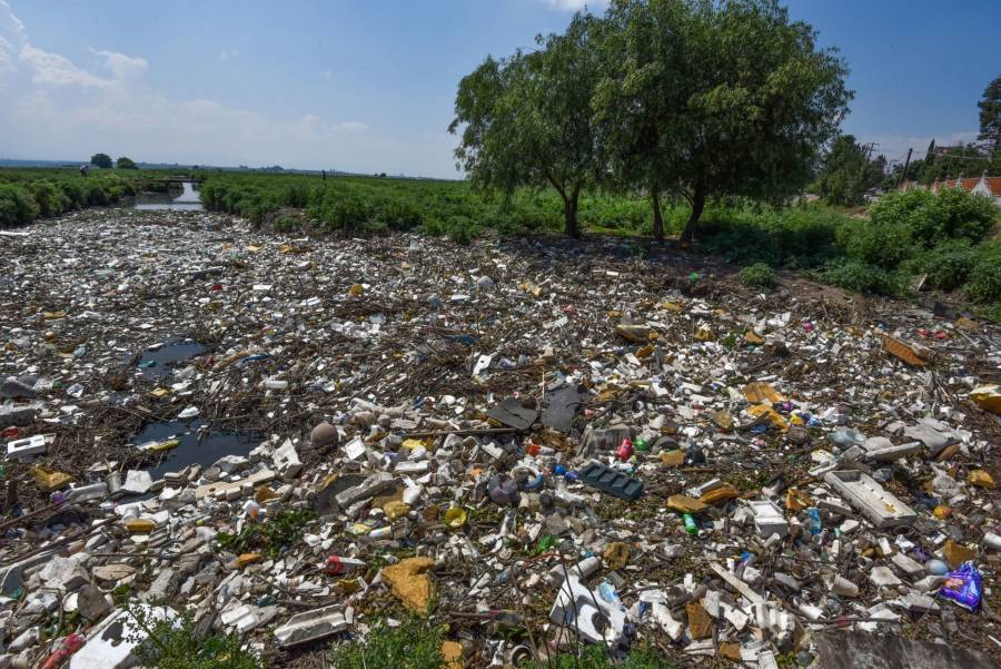 """""""Lealtad Verde"""" se pronuncia por un cambio en la gestión de residuos"""