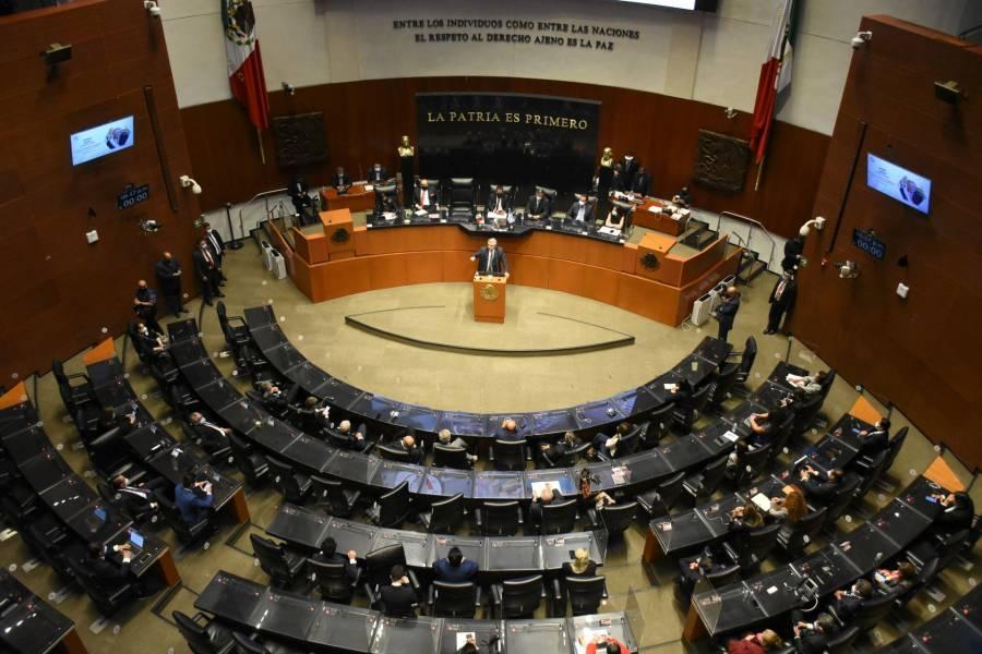 Morena cierra la puerta al PVEM para presidir el Senado