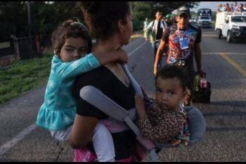 Detienen a 240 indocumentados, incluidos 61 menores