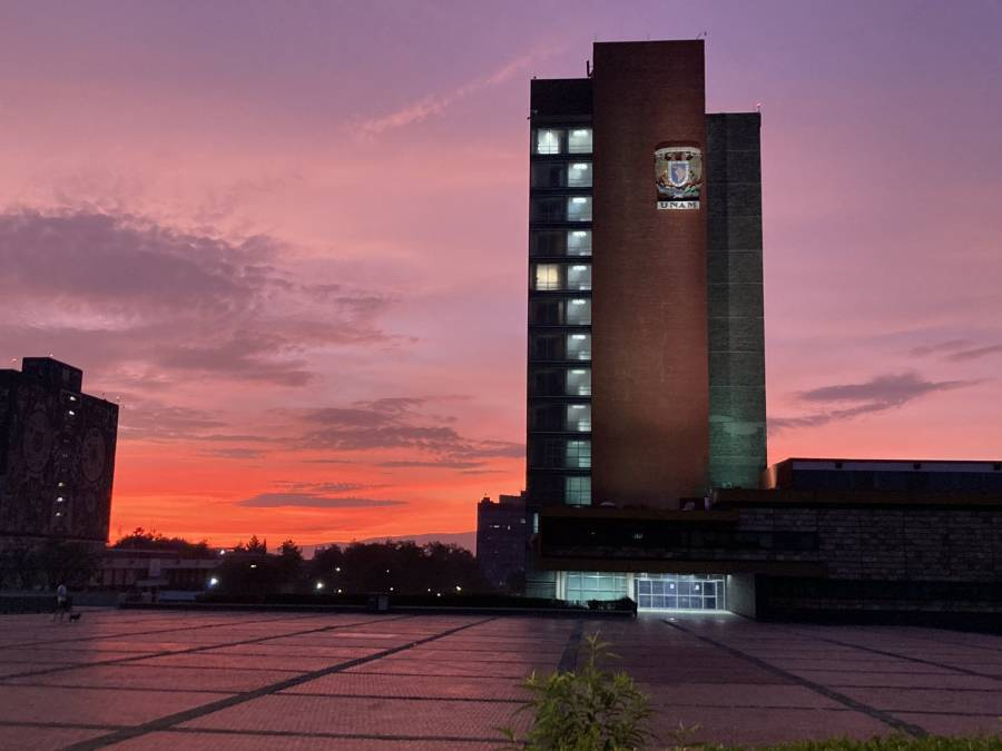 Se mantendrán clases a distancia: UNAM
