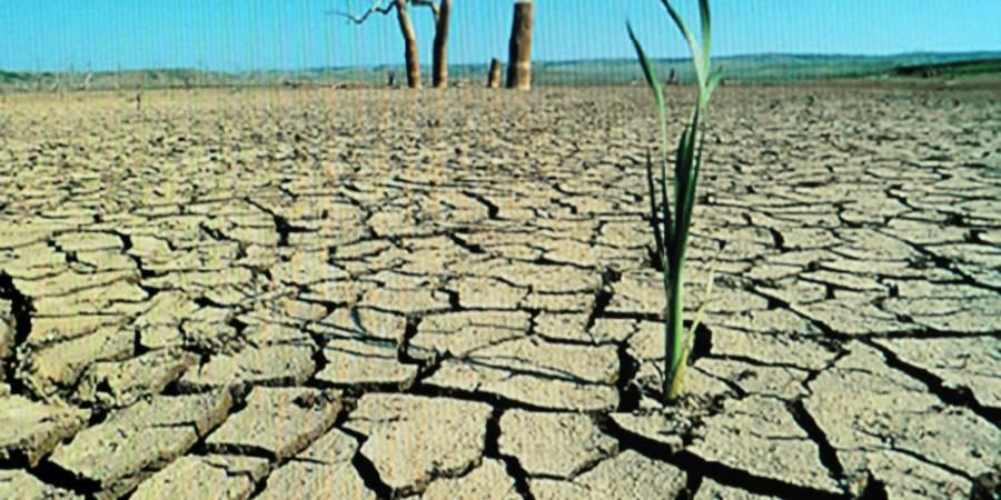 Desertificación, reduce más de 12% producción de alimentos en México: Investigadores