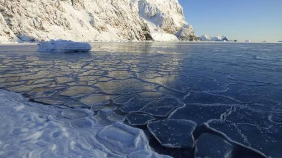 ¡Hierve la Antártida!, registra 18.3 grados de temperatura