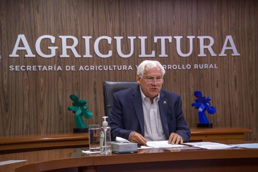 Cooperación México-Francia amplía oportunidades a productores de pequeña escala: Agricultura