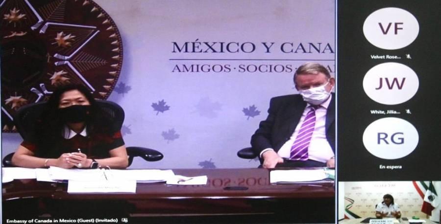 Canadá expresa preocupación por política energética de México