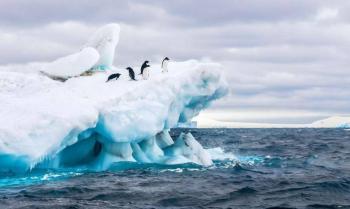 Reconocen oficialmente a Austral, nuevo océano en la Tierra