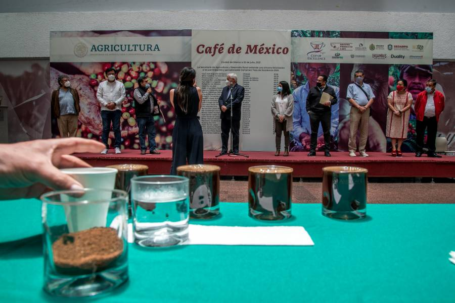 A nivel internacional, reconocen calidad y altos estándares del café mexicano