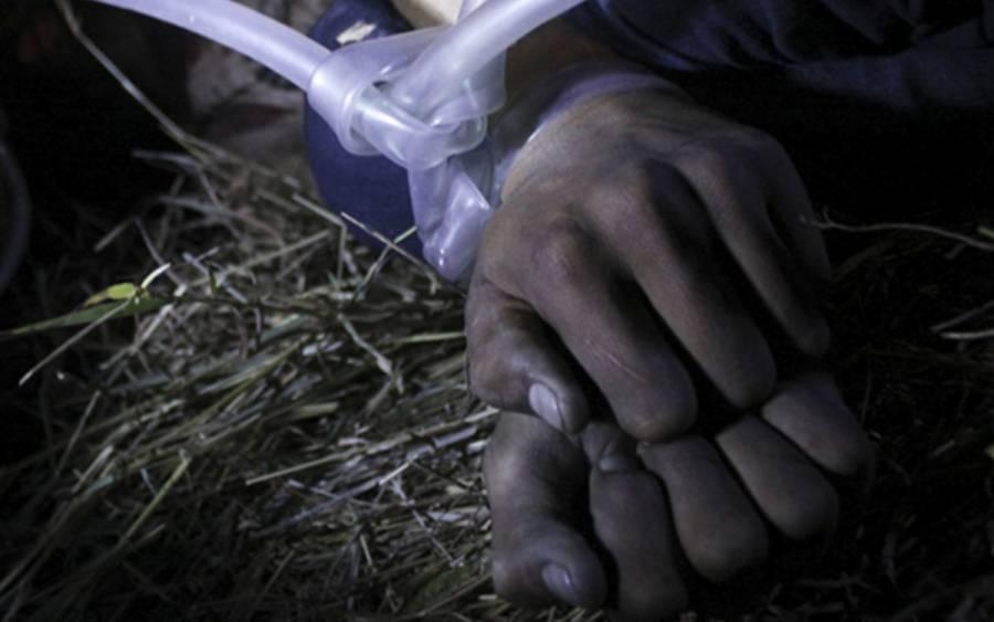 Llama PT a fortalecer protocolos contra la tortura