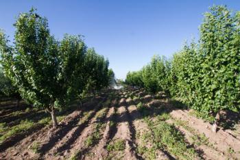 México, EEUU y Canadá se unen para enfrentar efectos del cambio climático en la agricultura