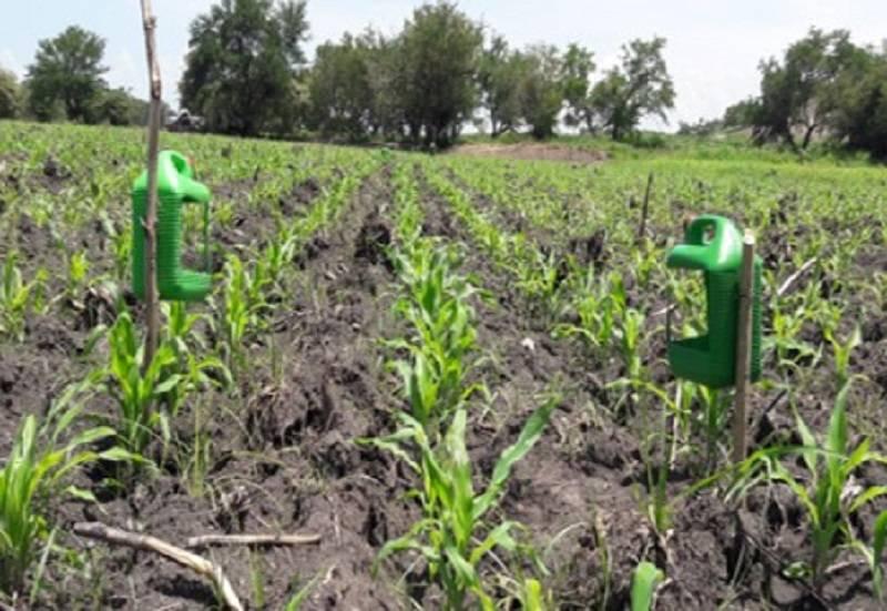 Investigadores del IPN proponen manejo agroecológico de plagas