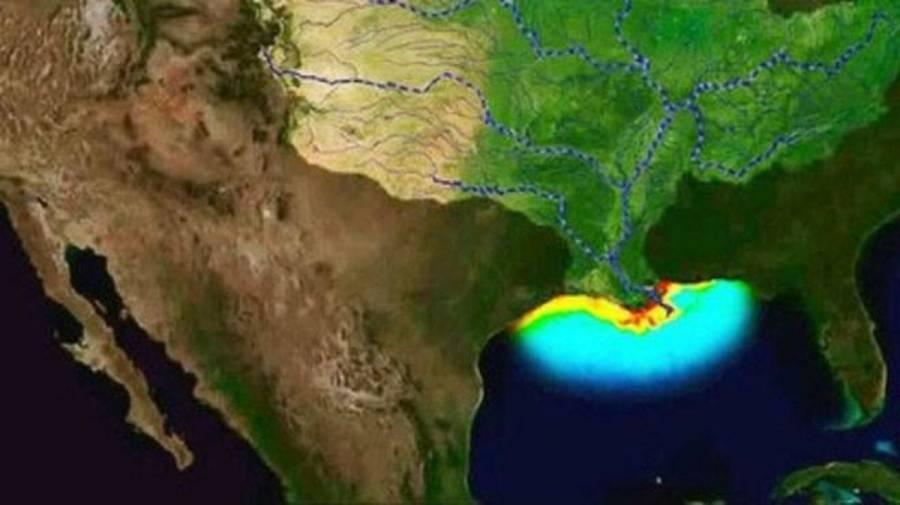 Preocupa expansión de zona muerta del Golfo de México