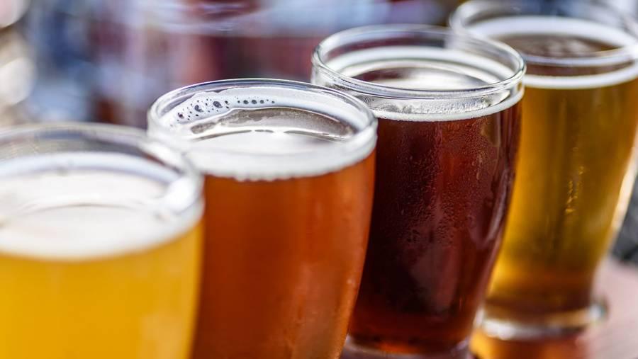 Cerveza, tequila y berries lo que más se exportó en primer semestre de 2021: GCMA