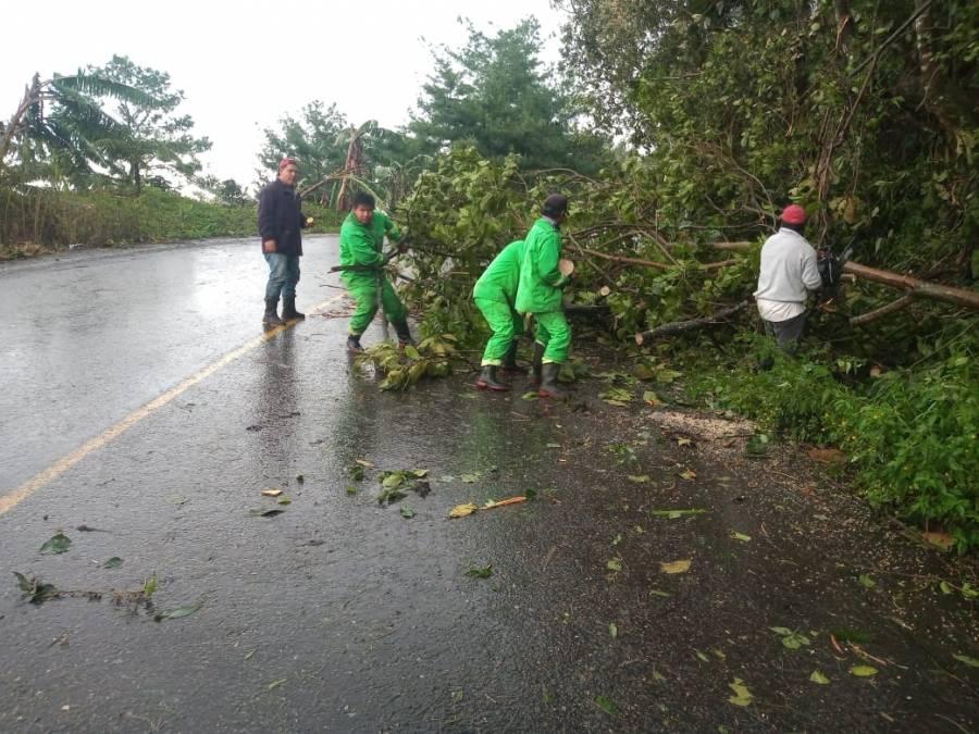 "SCT empieza a reparar daños en carreteras afectadas por ""Grace"""