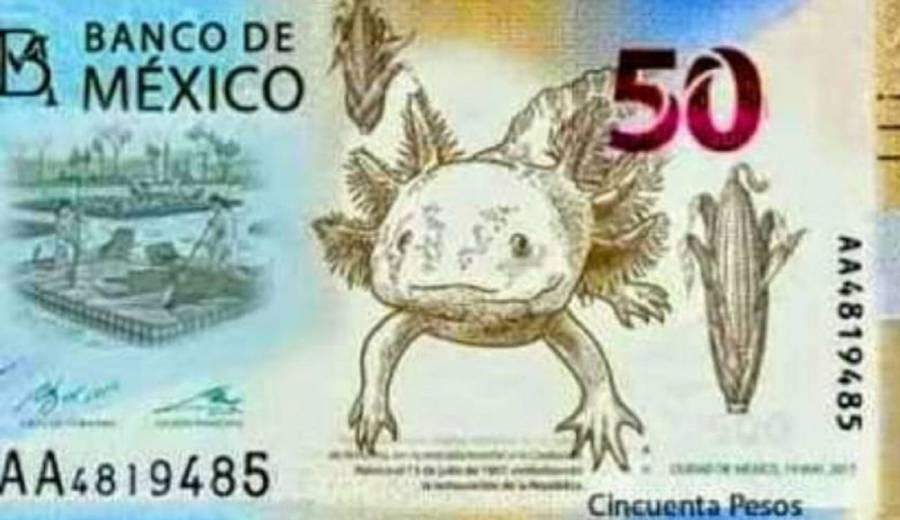 ¡Adiós, Juárez y Morelos! Banxico lanzará nuevos billetes de 20 y 50 pesos