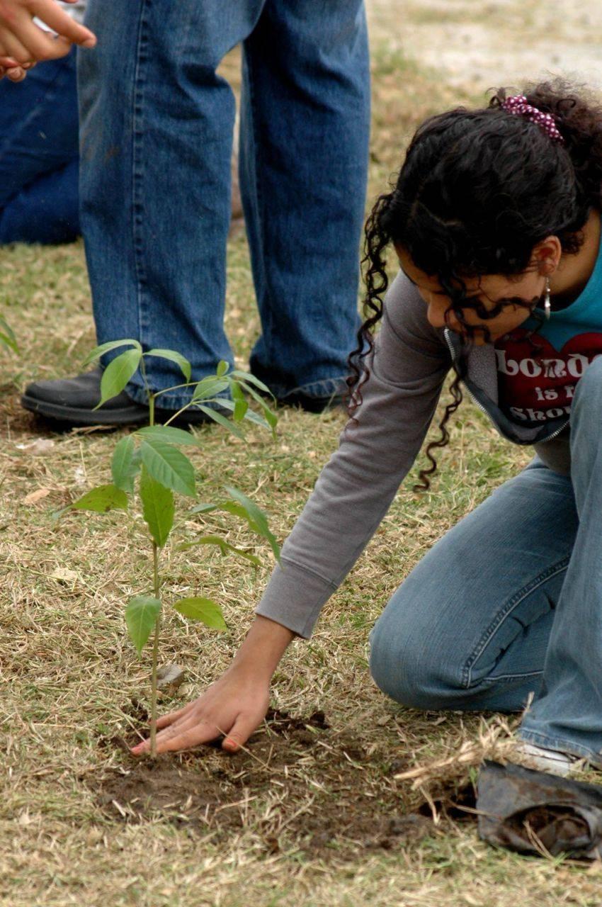 Regreso a la escuela con un árbol, un proyecto que marcará el Ciclo Escolar 2021-2022