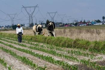 CNA exige más recursos para el campo en presupuesto 2022