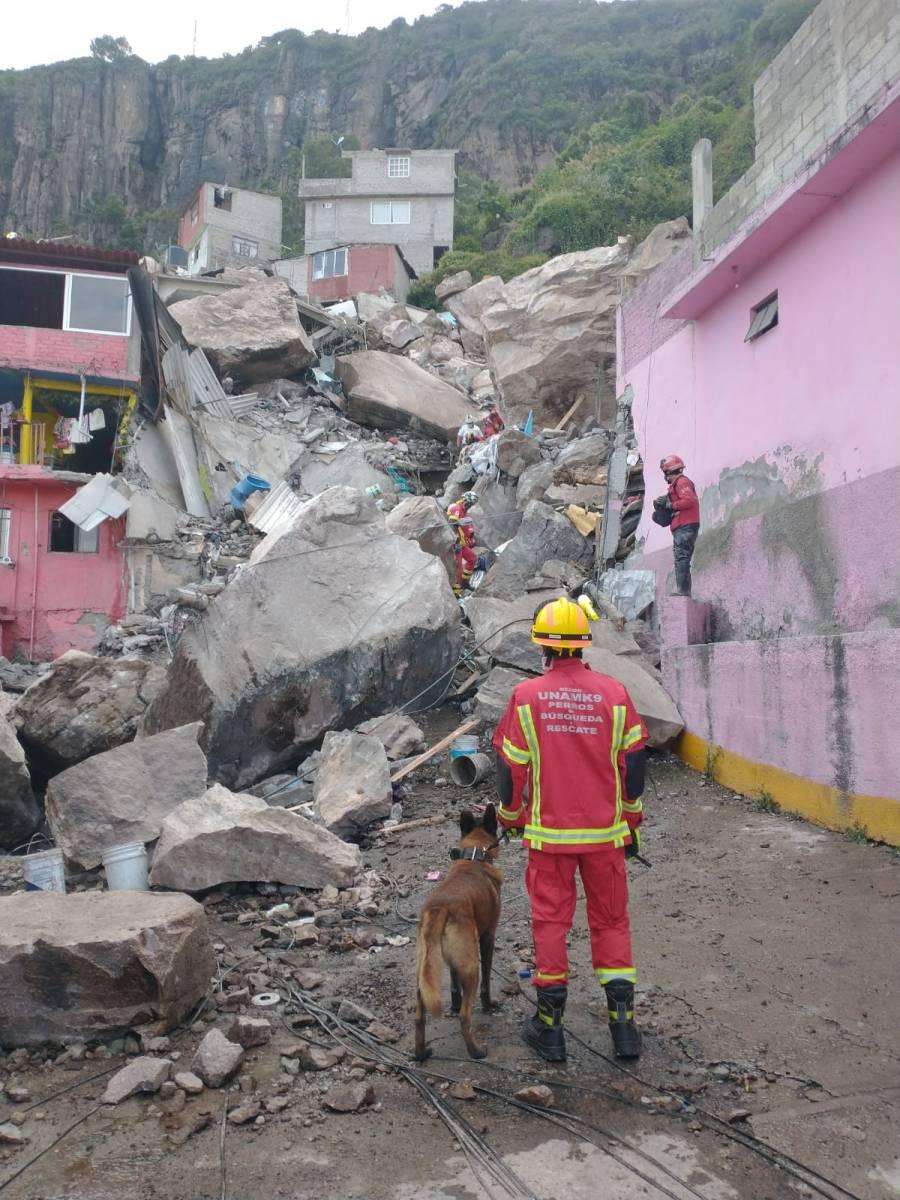 Rescatistas y binomios caninos de la UNAM apoyan tras el derrumbe en el cerro del Chiquihuite