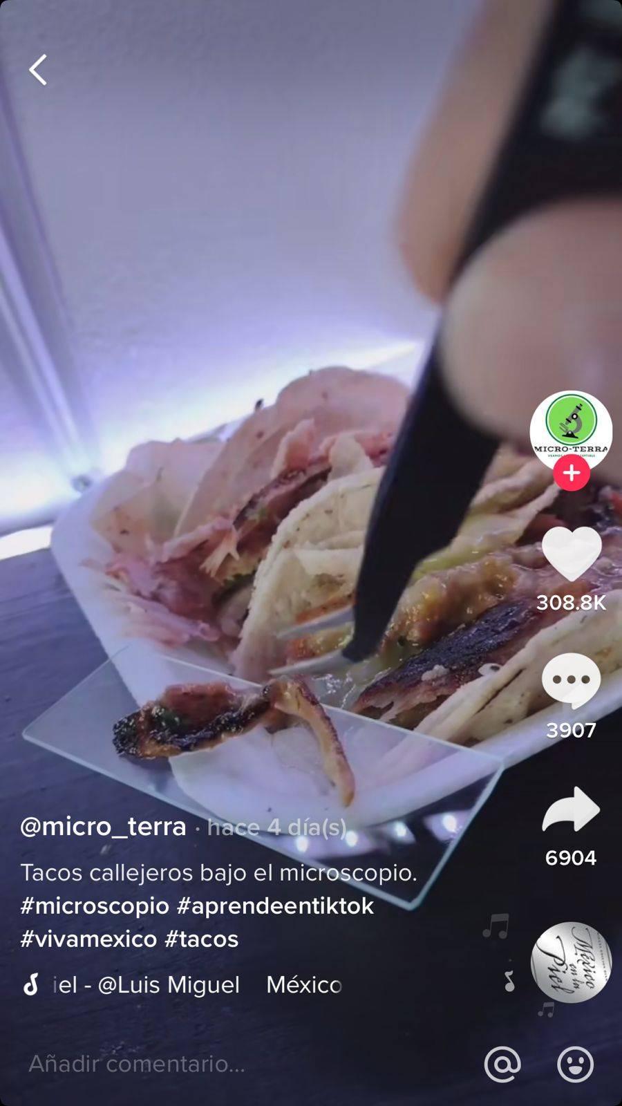 En TikTok analizan tacos callejeros con un microscopio: el resultado te sorprenderá