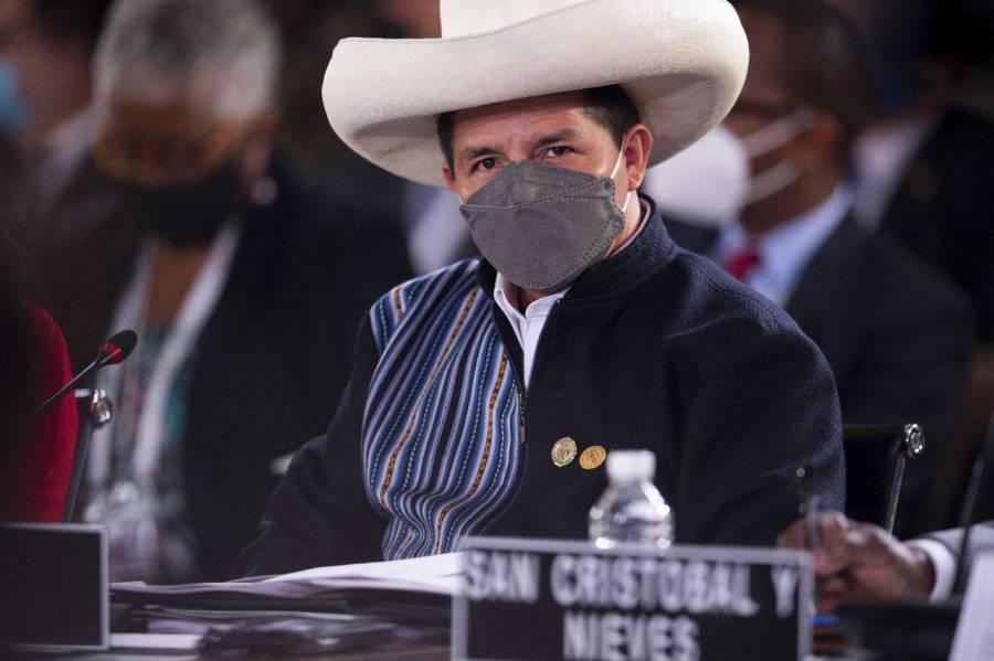 Presidente de Perú, Pedro Castillo, niega ante la OEA que su gobierno sea