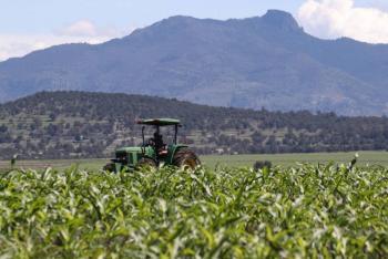 Continúa el repunte de mercados agrícolas en Chicago, gracias a Evergrande
