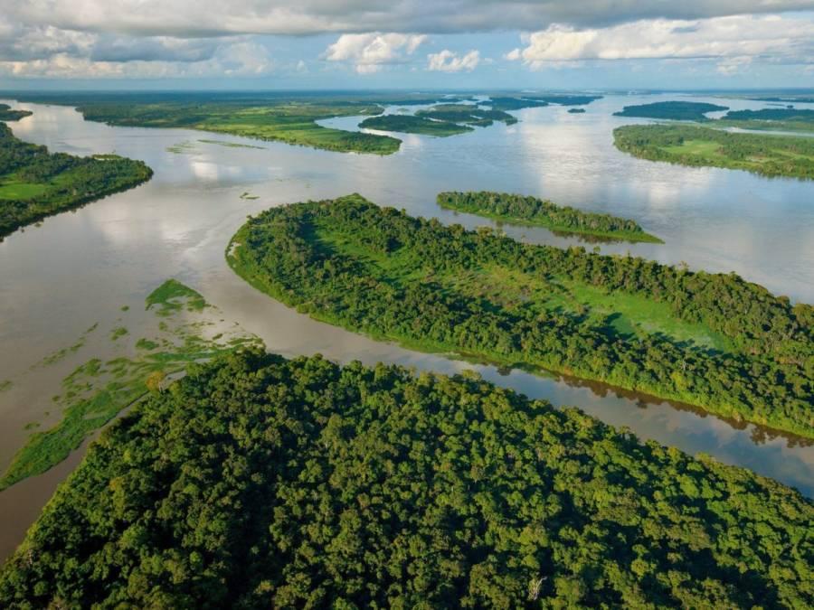 EEUU busca crear asociación de países que tienen grandes bosques