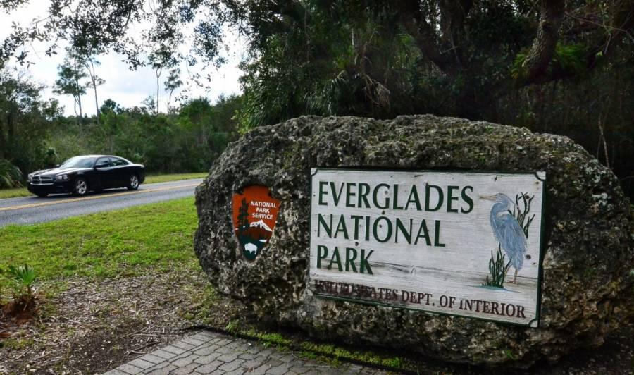 El cambio climático amenaza el futuro de los Everglades en Florida