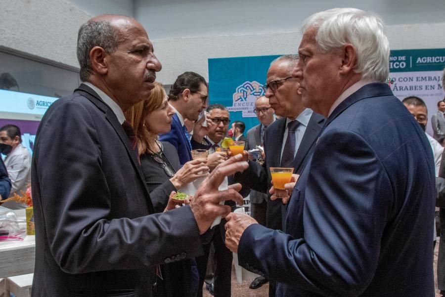 Países árabes reconocen la disposición y apertura del Gobierno de México para cooperación internacional