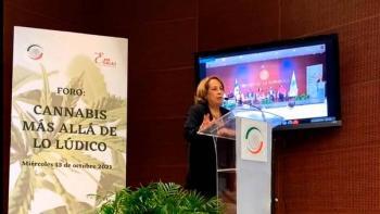 Regulación del cannabis generará empleos, reiteran en el Senado