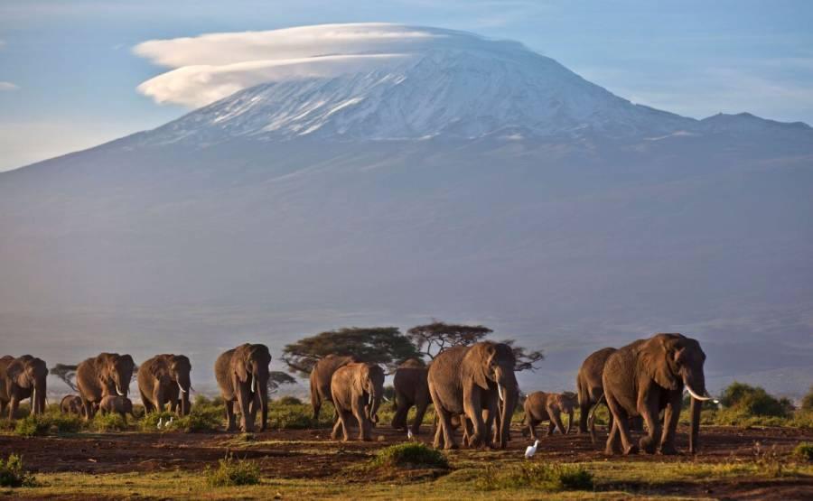 África será quien más padezca el calentamiento global: WMO