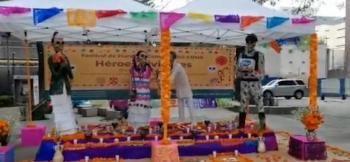 Comienza Festival de Flores de Cempasúchil