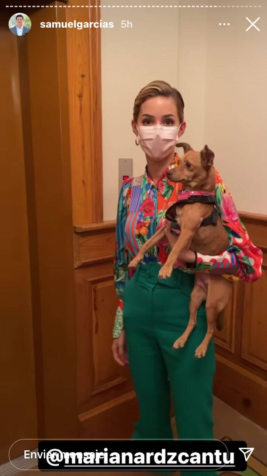 Mariana Rodríguez rescata a perrita perdida y la regresa con sus dueños