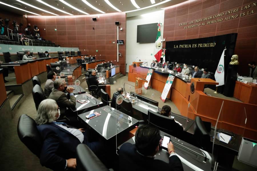 Construcción de Tren Maya debe privilegiar medio ambiente y vestigios históricos: Senadores