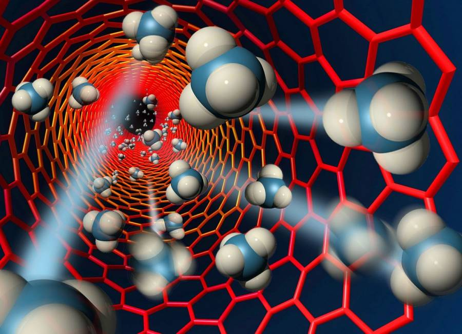 Crean prueba rápida para detectar Covid-19 a partir de nanotubos de carbono