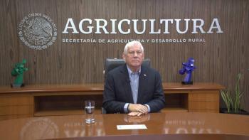 Sector avícola, estratégico autosuficiencia alimentaria del país: Agricultura