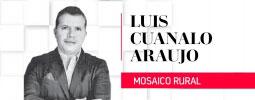 Columna de Luis Cuanalo