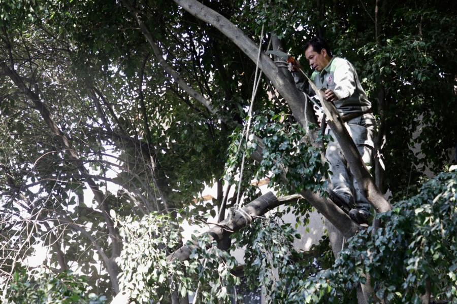 Llevan programa ?Caminos Seguros? a colonias Cuauhtémoc y Santa María Insurgentes