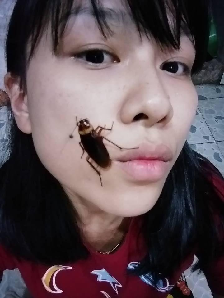 Surge ?Cockroach challenge? nuevo reto con cucarachas