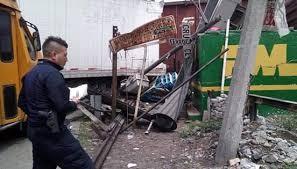 trailer y tren