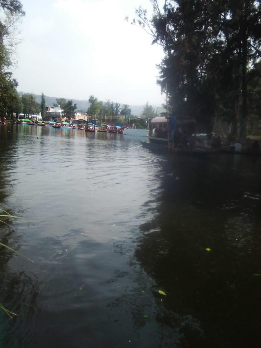 Prepara xochimilco programas de reactivación economía luego de contingencia sanitaria