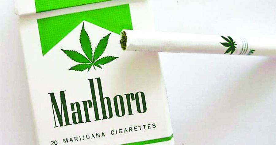 Marlboro apuesta por mariguana