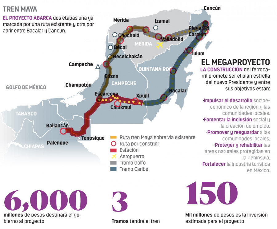 Población de jaguar crece 20% en 8 años, pero Tren Maya amenaza su supervivencia en Calakmul