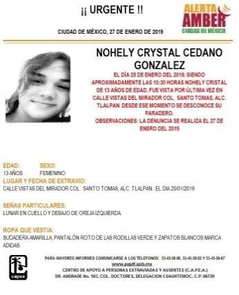 Se activa Alerta Amber para localizar a Nohely Crystal Cedano de 13 años